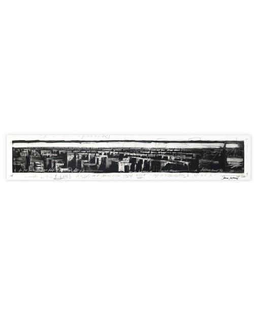 Jonathan Guaitamacchi - Johannesburg 2 - 35x190 cm